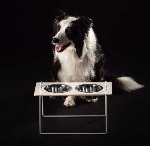 ruokakuppiteline keskikokoisille koirille.